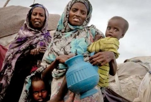 Updates on Women, Children and Human Rights from Around the Globe