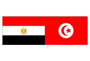 Emerging Leaders from Egypt and Tunisia Awarded Fellowships