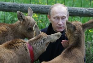 Putin's Incredible Victory