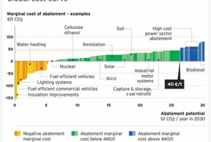 More on Biofuels