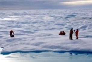 Economic Development in the Arctic
