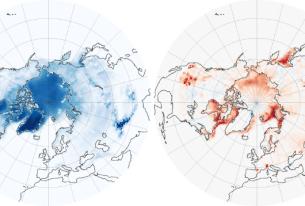 The Melting Cryosphere