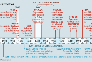 The G20 on Syria: Who Represents the Victims of Chemical Attacks?