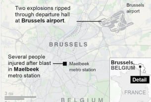 Brussels Attacks: The Immediate Aftermath