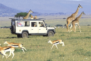 Kenya's Tourism Sector Set to Recover