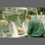 CDC, U.S. Health System Bungles WNV: Biosecurity Belongs to the Military