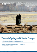 Was climate change one of the causal factors of The Arab Spring?