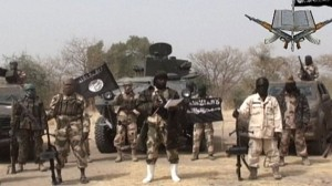 Boko Haram is just one of many terrorist or insurgent groups in the region.