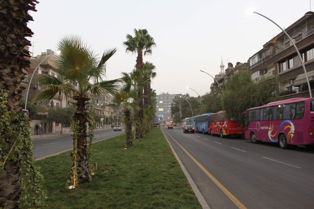 The Road leading to Douwar Kefer Soussah...WITH FANCY NEW GRASS!!!
