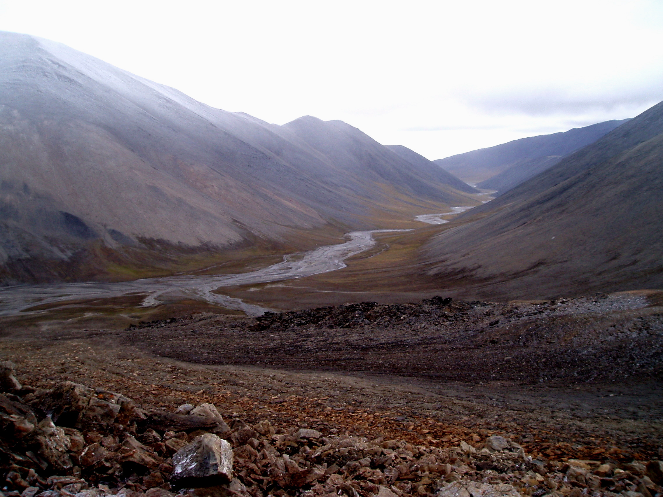 The Kishnikov (Predator) River on Wrangel Island. (c) Elizabeth Miller, Stanford University.