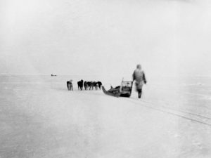 Peary's Expedition to the North Pole in the late 1800s.